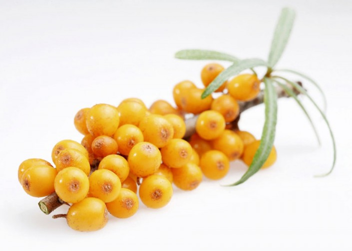 Sea Buckthorn for healthy, strong and shiny hair
